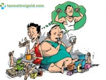 Thuốc tăng cân hiệu quả, an toàn cho người gầy
